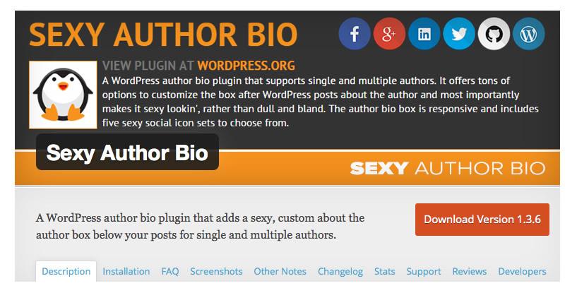 WP Author Bio 2