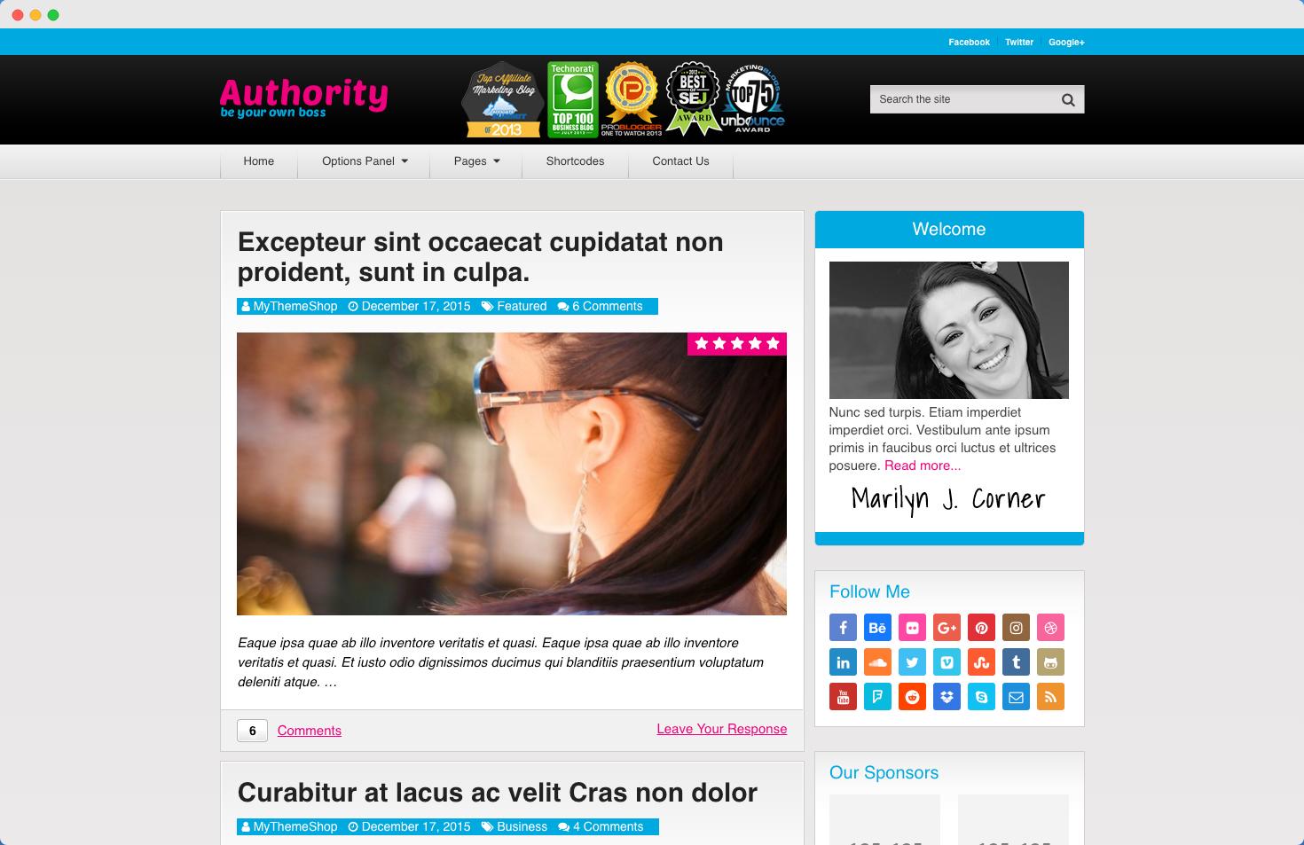 authority theme demo